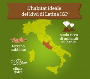 kiwi-di-latina-igp-05