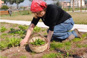 coltiviamo-agricoltura-sociale-2018