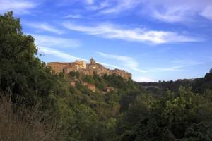 colli-etruschi-olio-evo-26-1536x1024